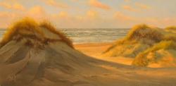 Duin en Strand_7